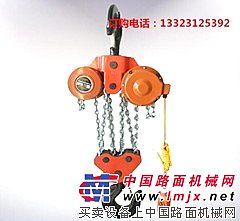 供应河北手牌群吊电动葫芦  群吊环链电动葫芦厂家