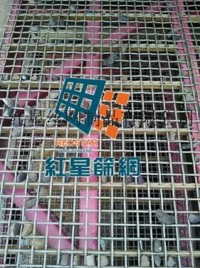 供应红星筛网筛分机械易损件