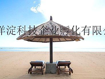 北京出境游北京国际旅行社转让出售