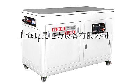 工程应急箱体式40kw汽油发电机