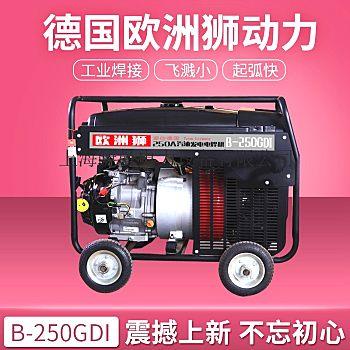 250A本田发电电焊机图片参数