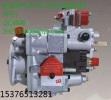供应山推K1902-75B自卸车发动机PT燃油泵总成3419462