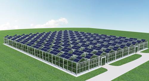 供应YOLI太阳能智能温室
