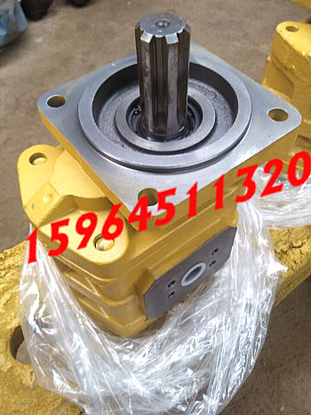供应山东济南济南液压泵有限责任公司齿轮泵