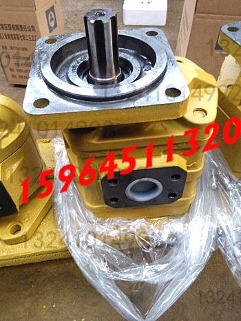 供应河南郑州济南液压泵有限责任公司齿轮泵