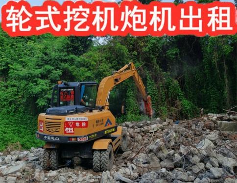 深圳轮式挖土机出租 炮机出租 夹木器出租 挖掘机大小斗租赁